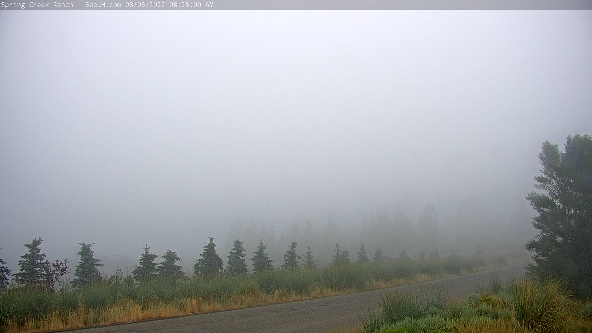 Jackson hole Webcam